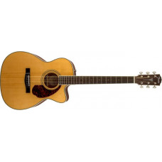 Fender Paramount PM-3 Standard Trible 0